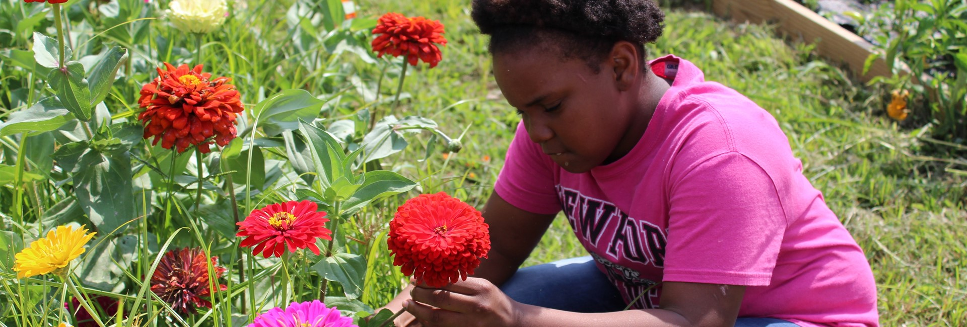 Student picks flowers for the flower arrangements the garden club is selling.